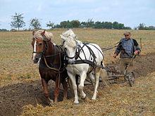 220px-Farmer_plowing_in_Fahrenwalde,_Mecklenburg-Vorpommern,_Germany.jpg